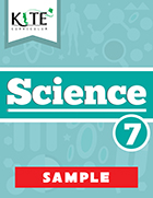 KITE Curriculum Science 7